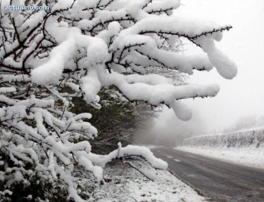 Bułgaria - Spadło 30 cm śniegu, tysiące gospodarstw bez prądu, sparaliżowany transport