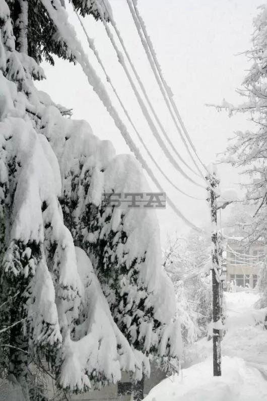 Bułgaria - Z powodu śniegu wprowadzono stan wyjątkowy, 848 miast bez prądu 3