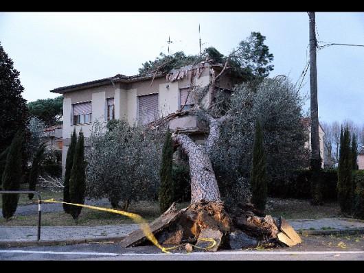 Huraganowy wiatr we Włoszech 2