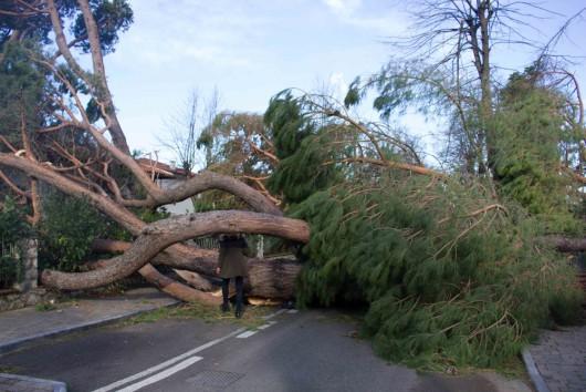 Huraganowy wiatr we Włoszech 3