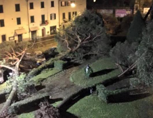 Huraganowy wiatr we Włoszech 4