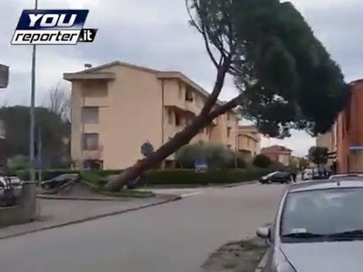 Huraganowy wiatr we Włoszech 6