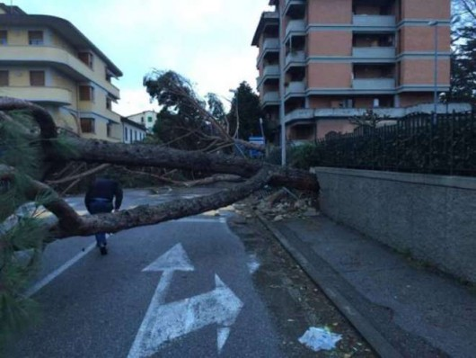 Huraganowy wiatr we Włoszech 7