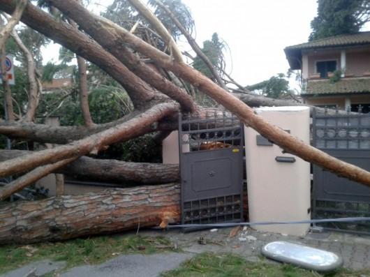 Huraganowy wiatr we Włoszech 8