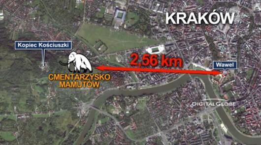 Kraków - mamuty