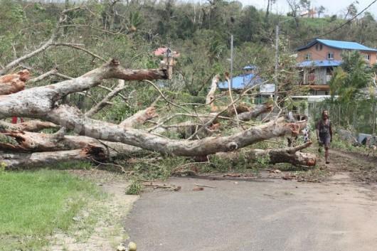 Vanuatu po cyklonie 07