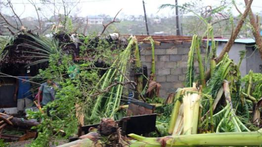 Vanuatu po cyklonie 15