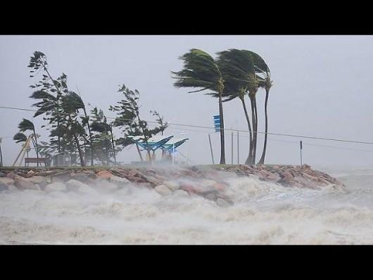 Vanuatu po przejściu cyklonu 3