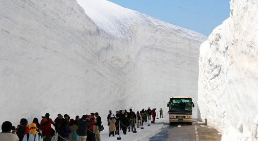 Japonia - Śnieżny tunel otwarty został dla turystów 1