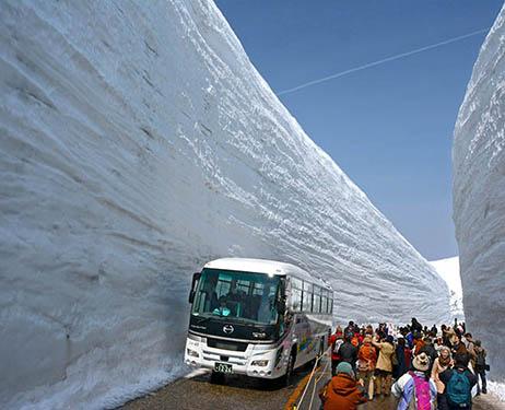 Japonia - Śnieżny tunel otwarty został dla turystów 2