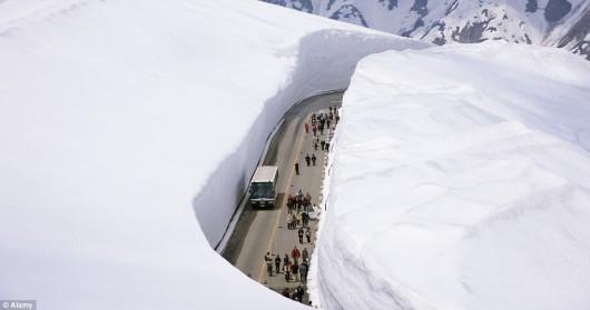 Japonia - Śnieżny tunel otwarty został dla turystów 6