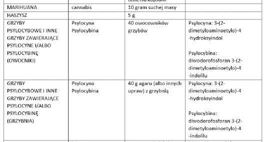 Narkotyki - Wytyczne prokuratury 2