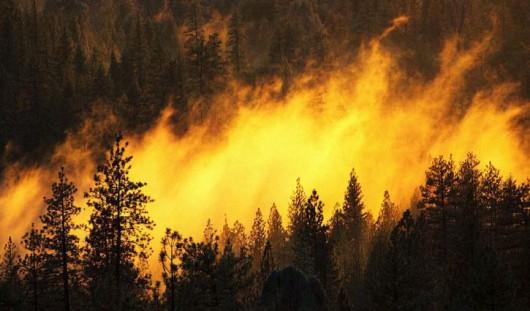 Rosja - Ogromne pożary na Syberii, w 38 miejscowościach spłonęło ponad 1200 domów 2