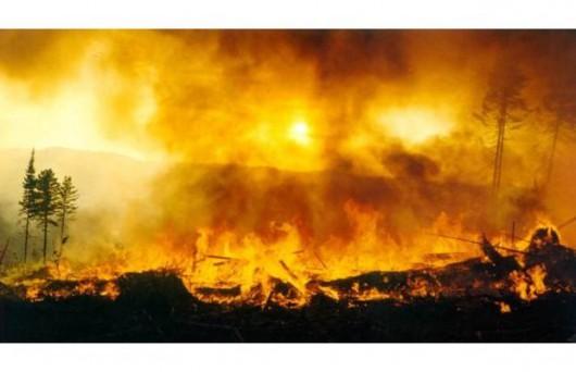 Rosja - Ogromne pożary na Syberii, w 38 miejscowościach spłonęło ponad 1200 domów 8