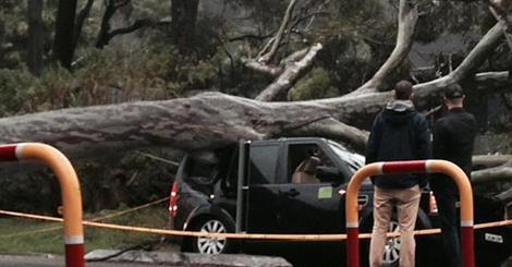 Sydney, Australia - Ogromna burza pozbawiła prądu 200 tysięcy osób 10