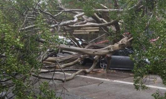 Sydney, Australia - Ogromna burza pozbawiła prądu 200 tysięcy osób 11