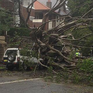 Sydney, Australia - Ogromna burza pozbawiła prądu 200 tysięcy osób 12