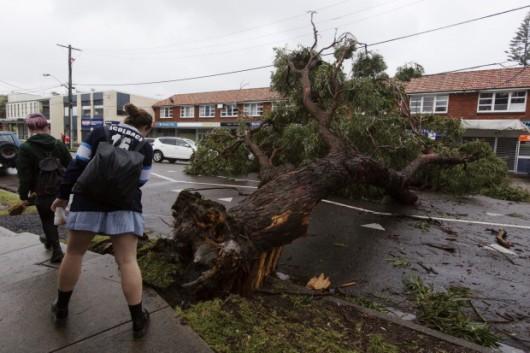 Sydney, Australia - Ogromna burza pozbawiła prądu 200 tysięcy osób 3