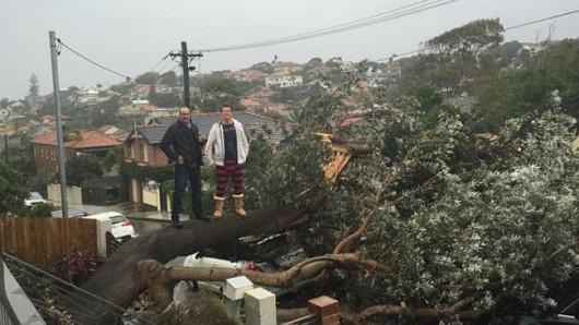 Sydney, Australia - Ogromna burza pozbawiła prądu 200 tysięcy osób 5