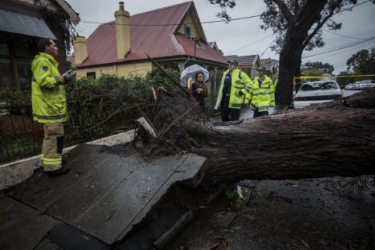 Sydney, Australia - Ogromna burza pozbawiła prądu 200 tysięcy osób 9