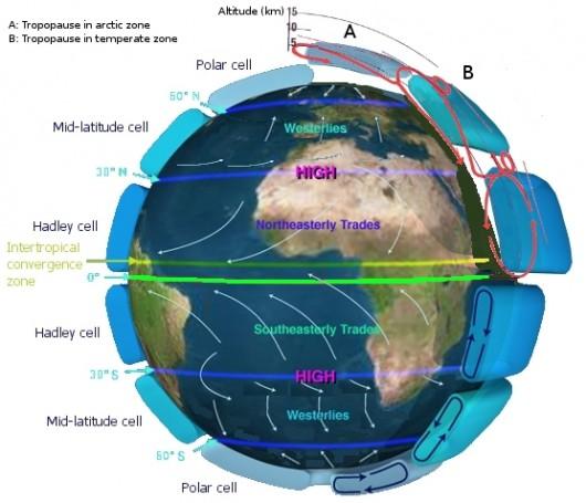 Diagram ogólnej cyrkulacji atmosfery z zaznaczoną cyrkulacją Hadleya pomiędzy obszarami równikowymi a obszarami podzwrotnikowymi, komórkami średnich szerokości i komórkami polarnymi /WikiPedia/