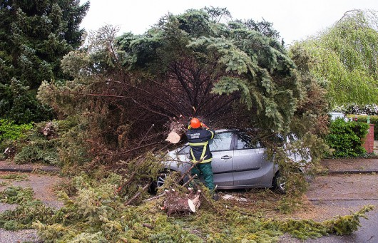 A firefighter tries to cut a fallen tree on a car following a heavy storm on May 5, 2015 in Hamburg, Germany.   AFP PHOTO / DPA /  DANIEL BOCKWOLDT +++GERMANY OUT