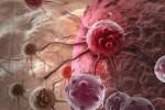 Wirus HCV