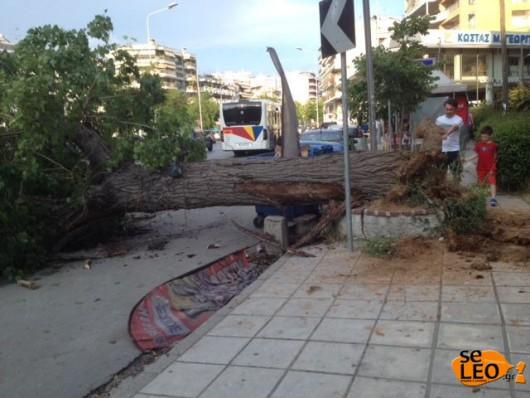 Hiszpania - Ogromna ulewa i gradobicie w Madrycie 6