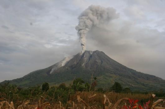 Sumatra - Erupcja wulkanu Sinabung 7