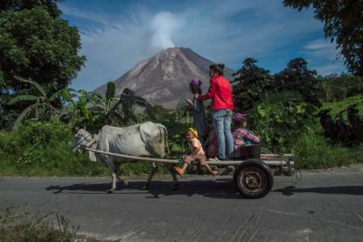 Sumatra - Erupcja wulkanu Sinabung 8