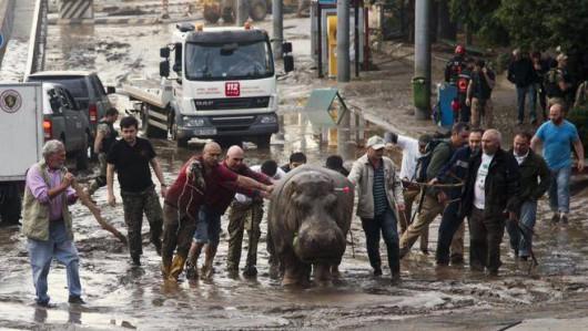Tbilisi, Gruzja - Ogromna powódź w bardzo krótkim czasie 1