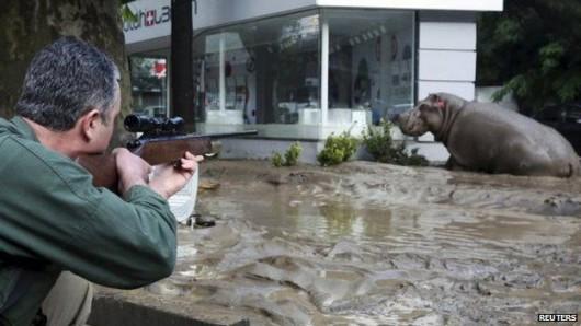 Tbilisi, Gruzja - Ogromna powódź w bardzo krótkim czasie 5