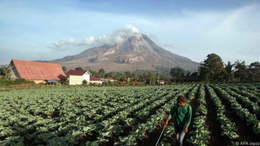 Wulkan Sinabung 2