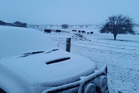 Śnieg sypie w Australii -10