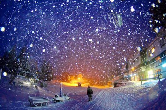 Śnieg sypie w Australii -7