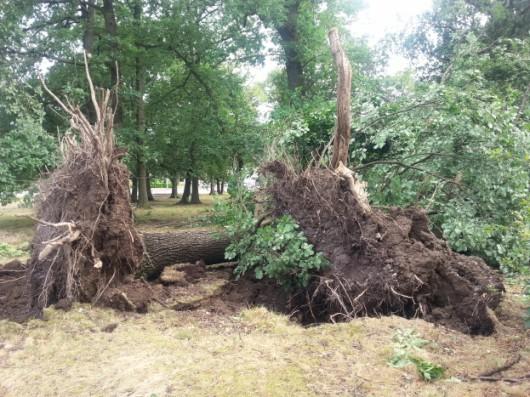 Firminy, Francja - Tornado niszczyło domy i linie energetyczne -1