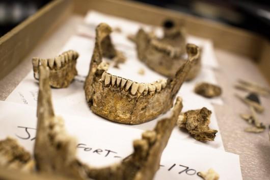 Jamestown, USA - Odkopano szczątki czterech mężczyzn, którzy najprawdopodobniej byli pierwszymi przywódcami kolonistów -2