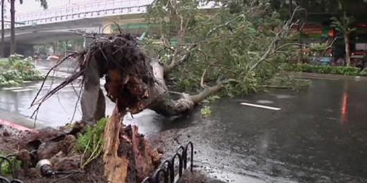 Japonia - 12-metrowe fale wywołał supertajfun Chan-hom 3
