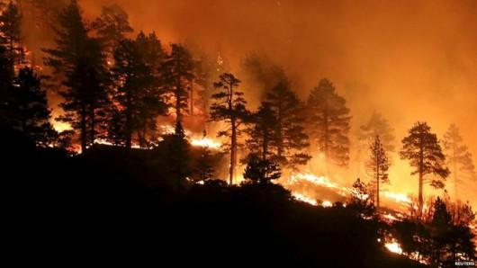 Los Angeles, USA - Pożar lasów dotarł do autostrady międzystanowej -1
