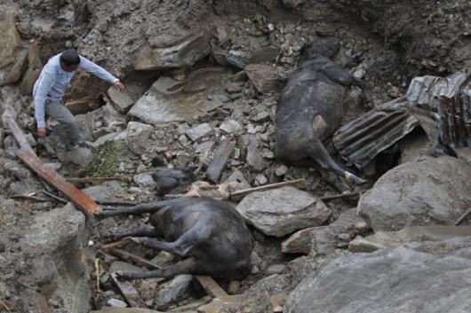 Nepal - Lawina błotna zabiła w kilku wioskach co najmniej 30 osób -6