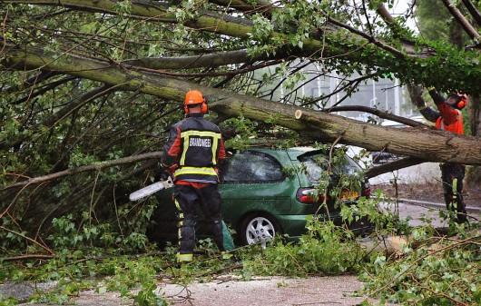 2015-07-25 15:30:00 LEIDEN - Brandweermannen snoeien takken van een boom die op een auto gewaaid is op de Haagweg in Leiden. Volgens het KNMI is de storm die over Nederland raast de eerste zware zomerstorm sinds 12 augustus 1914, en de zwaarste sinds werd begonnen met metingen in 1901. ANP AS MEDIA