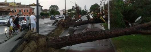 Pianiga, Włochy - Latały dachy domów i samochody, trąba powietrzna szalała w pobliżu Wenecji 6
