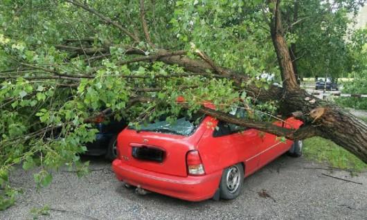 Polska - 2900 interwencji straży, wichury uszkodziły 125 budynków 4