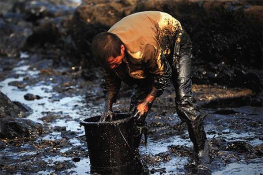 Rosja - Katastrofa ekologiczna w Nieftiejugansk, ropa z uszkodzonego ropociągu dostała się do wody 7