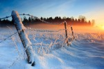 Sroga zima