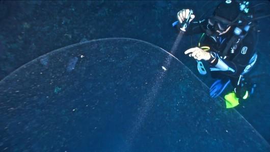 Turcja - W Morzu Śródziemnym zauważono bańkę o średnicy 4 metrów, naukowcy podejrzewają, że może to być wielkie skupisko jaj kalmara