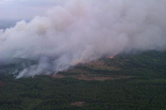 Ukraina - Pożar w zamkniętej strefie wokół elektrowni atomowej w Czarnobylu