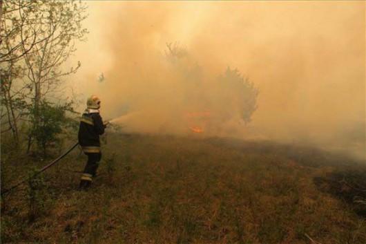 Węgry - Piorun spowodował pożar lasów jałowcowych -1