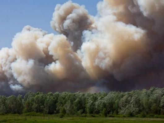 Węgry - Piorun spowodował pożar lasów jałowcowych -2