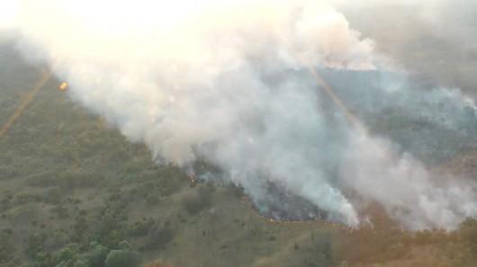 Węgry - Piorun spowodował pożar lasów jałowcowych -4